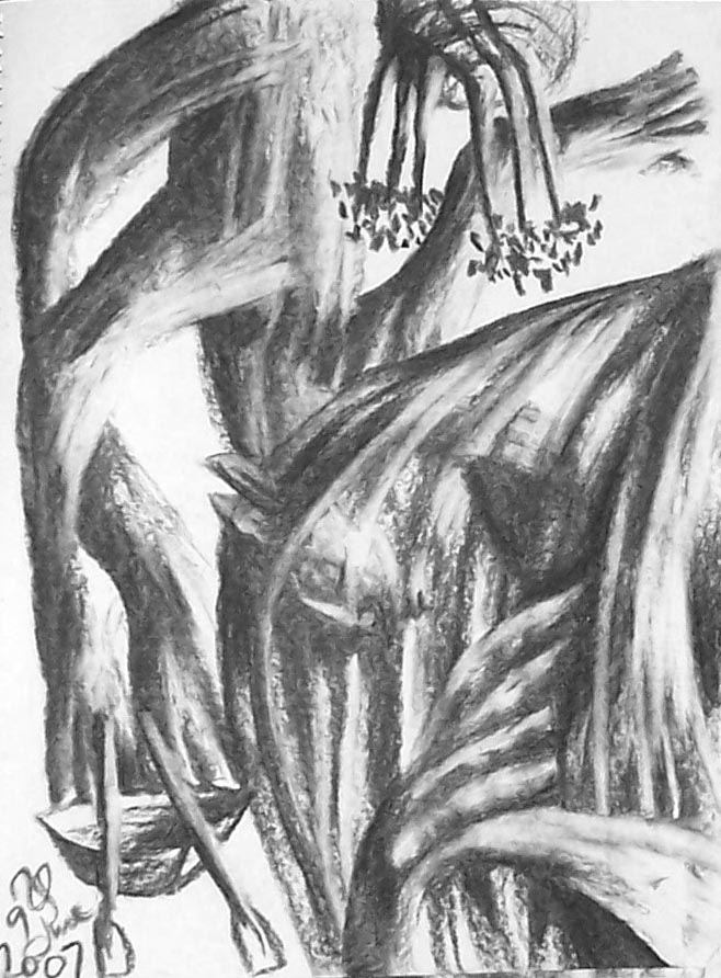 Man in a Boat, 2007
