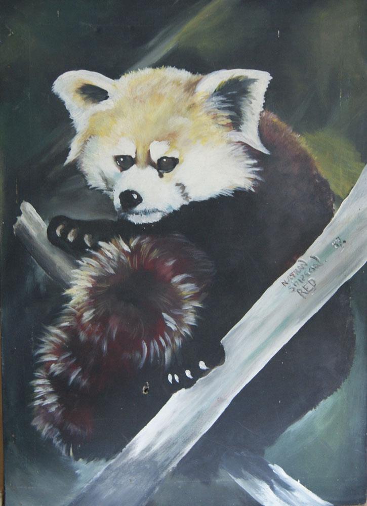 Red Panda, 1987