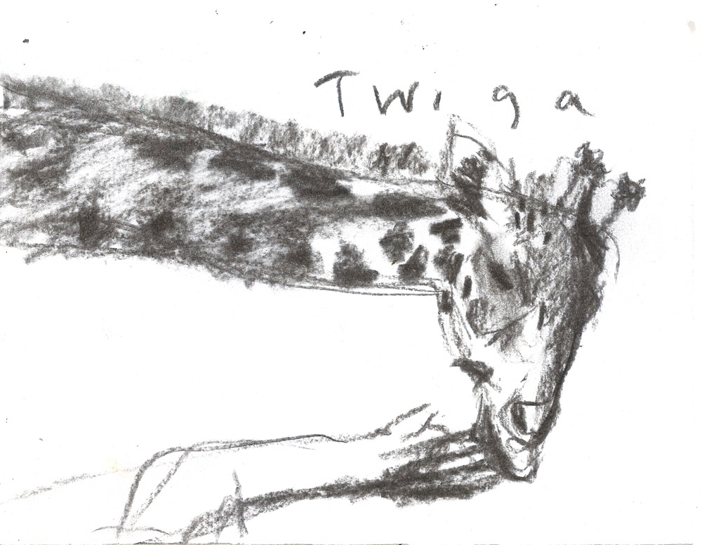 Twiga, 2011